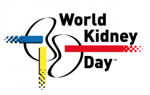 Logo_WKD2017