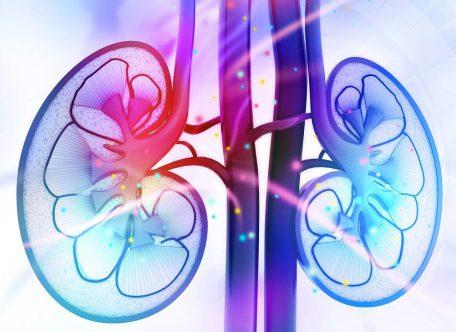 Un solo rene e due pazienti salvati. Grazie alla chirurgia robotica