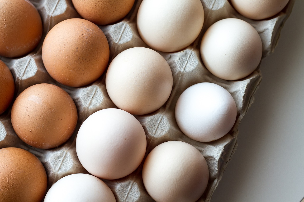 insalata di pasta con albumi d'uovo